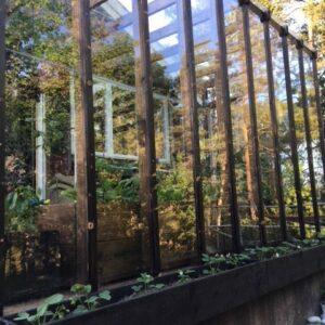 Växthus och orangeri