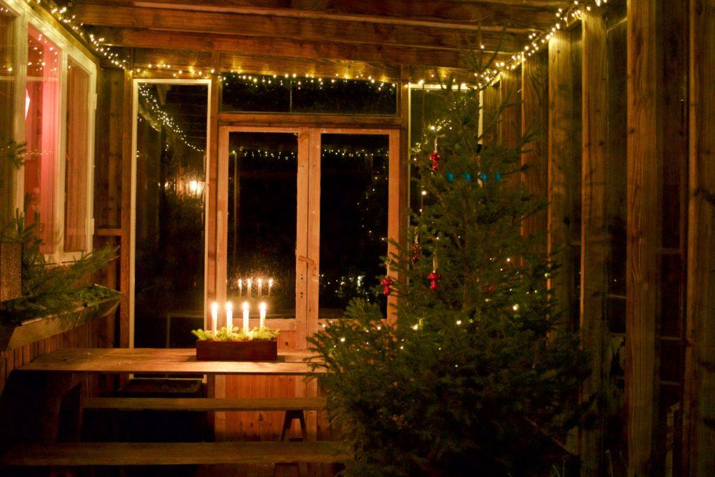 Jul i orangeriet