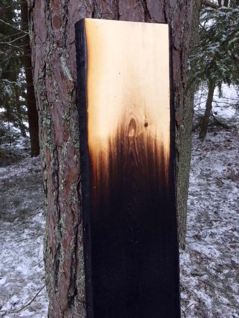 Svenskt trä, Shou Sugi Ban och design – Träffa TREE på Stockholm Furniture Fair